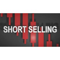 Short Interest Data Stock Options Picks Premium Alerts PLUS